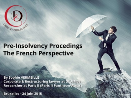 Pre-insolvency Proceedings : the French Perspective