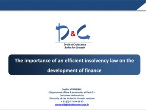 The importance of an efficient insolvency law on the development of finance