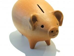 Règle de Droit et développement des modes de financement alternatifs au crédit bancaire