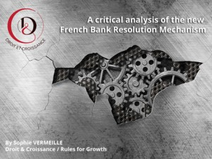 A Critical Analysis of the French Law Mechanism